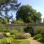 Harcourt Arboretum Picnic